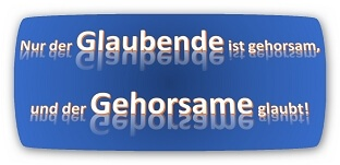 Read more about the article Geistesgaben? Ja! Pfingstbewegung? Nein, danke!