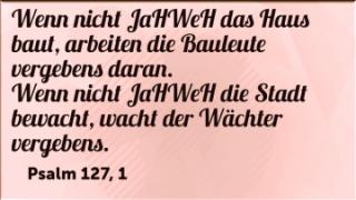 Read more about the article Das Bäumchen der Wahrheit