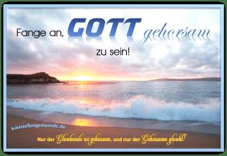 Read more about the article Neutestamentlicher Gehorsam