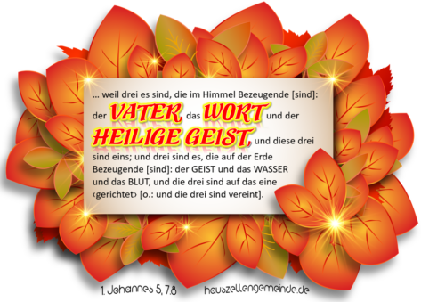 Read more about the article Weshalb 1. Johannes 5,7.8a in die Bibel gehört